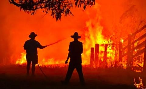 Kebakaran Makin Parah, Warga Australia Didesak Evakuasi