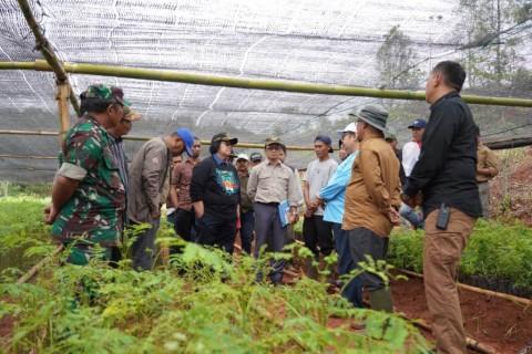 225 Kebun Bibit Disiapkan Hijaukan Lebak-Bogor