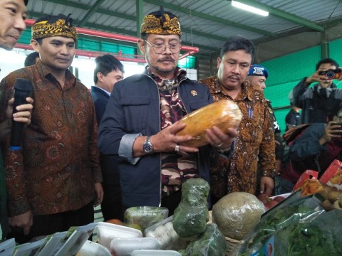 Mentan Syahrul Fokus Produksi dan Ekspor Komoditas pada 2020
