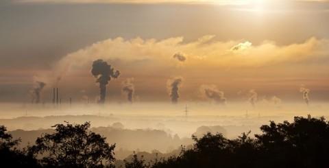 Polusi dan Dampak pada Kesehatan Mental