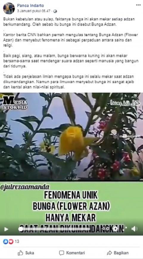 [Cek Fakta] Bunga Ini Mekar Hanya saat Azan Berkumandang? Ini Faktanya
