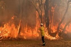 Kebakaran Australia, Perubahan Iklim atau Kelalaian?
