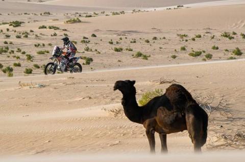 Tak Menyerah, Joan Barreda Menang Tipis di Etape-10 Dakar Rally