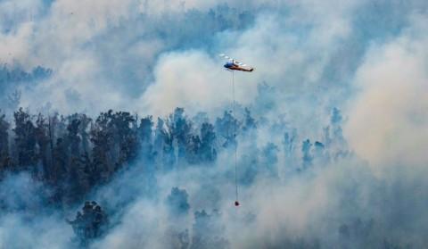 Hujan Bantu Padamkan Api di Australia