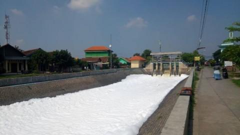 Sungai Berbusa di Sidoarjo Jadi Tontonan Warga