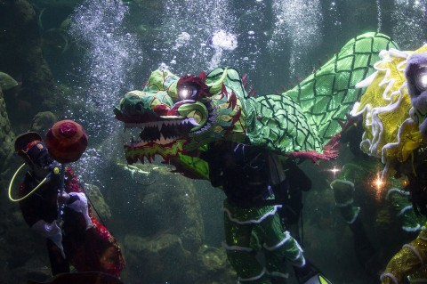 Sambut Imlek, Ancol Gelar Pertunjukan Barongsai Dalam Air