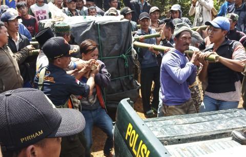 BKSDA Tangkap Harimau Sumatera di Muara Enim