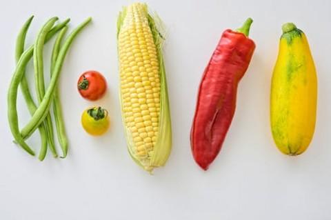 Manfaat Asupan Makanan Organik bagi Anak