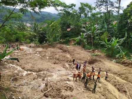 Wilayah Terdampak Longsor di Sukajaya Ditanami Vetiver