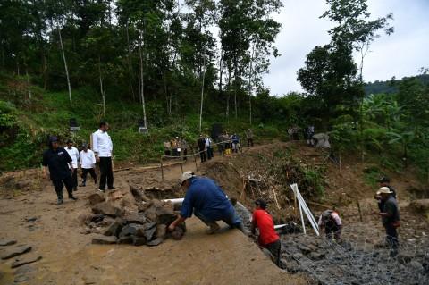 Jokowi Minta Wilayah Rawan Bencana Ditanam Vetiver