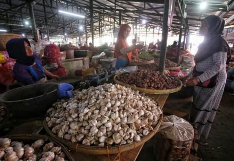 Harga Bawang Putih Ditargetkan Rp40 Ribu per Kg