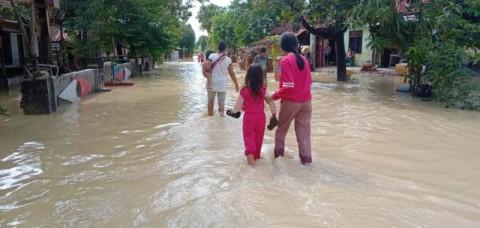 Ratusan Rumah di Cirebon Terendam Limpasan Sungai Cisanggarung