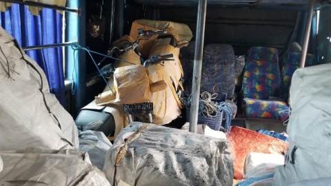 BNNP Banten Sikat Kurir Ganja di Terminal Bus Tangerang