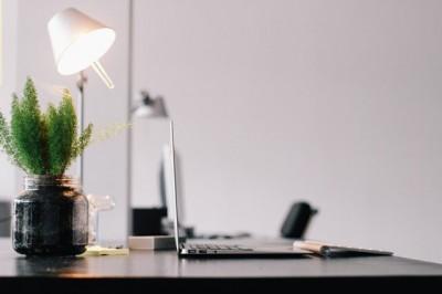 Tanaman Hias Bisa Kurangi Stres di Tempat Kerja