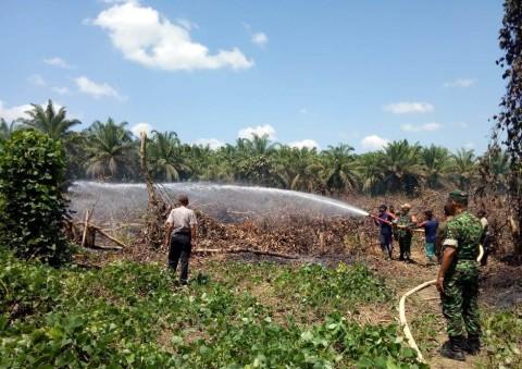 Dua Hektare Lahan di Aceh Singkil Terbakar