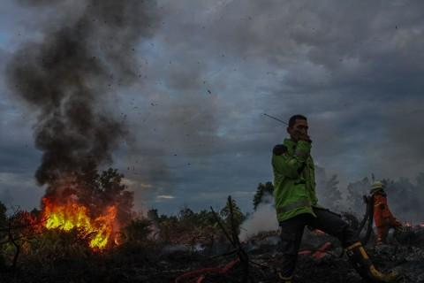 RUU Cipta Kerja Perberat Hukuman Perusahaan Pembakar Lahan
