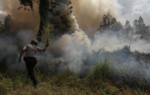 11 Titik Panas Terdeteksi di Pesisir Riau