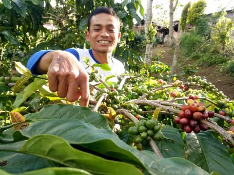 Mentan Bidik Pengusaha Muda Pertanian Milenial
