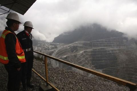 <i>Smelter</i> Freeport di Gresik Ditargetkan Beroperasi 2023