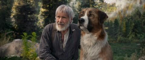 4 Fakta Menarik Film The Call of the Wild