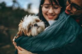 Hongkong Konfirmasi Seekor Anjing Terjangkit Korona