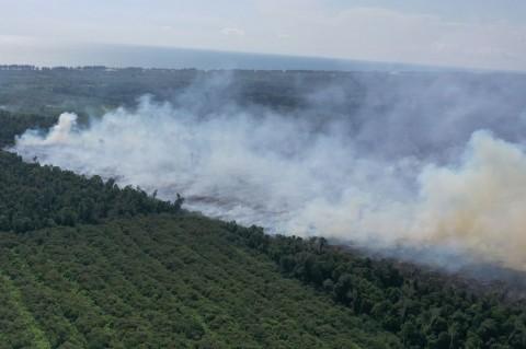 Kebakaran Lahan Gambut di Aceh Jaya Capai 30 Hektare