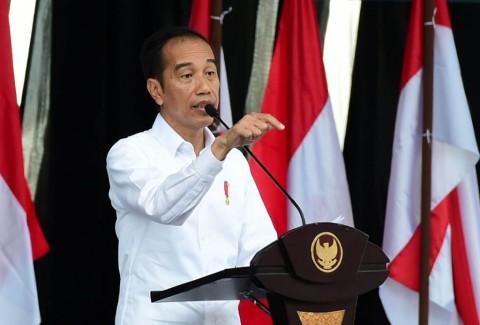 Jokowi Jelaskan Keampuhan Klorokuin untuk Pasien Covid-19