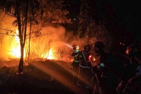 19 Orang Tewas dalam Kebakaran Hutan di Tiongkok