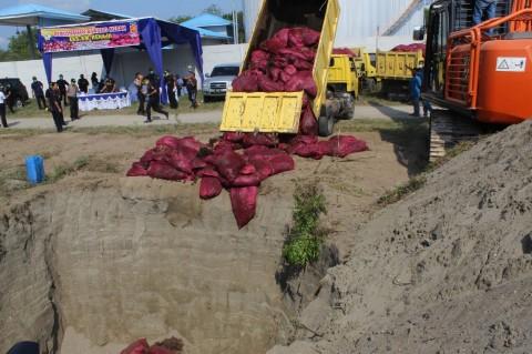 18 Ton Bawang Merah Ilegal di Aceh Dimusnahkan