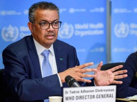 WHO Khawatirkan Pertumbuhan Infeksi Covid-19 yang Terus Meningkat