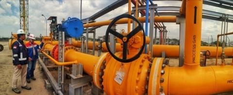 PGN Alirkan Gas ke Kawasan Industri Pelindo Dumai
