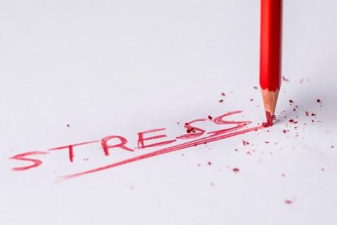 Pengaruh Stres bagi Pasien Covid-19