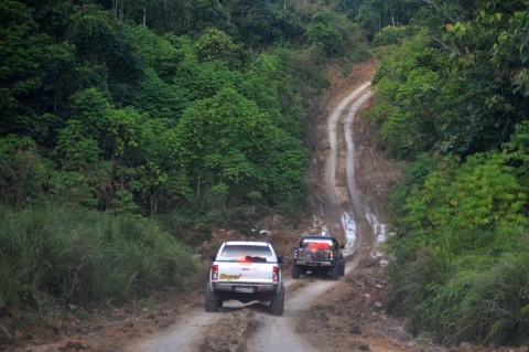 Peta Penghentian Pemberian Izin Baru Hutan Primer Diterbitkan