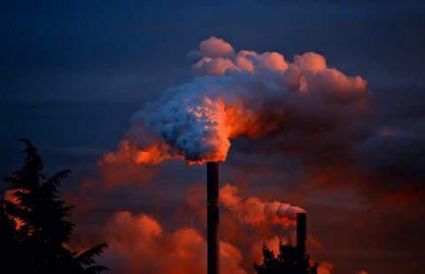 Beragam Polutan dan Bahayanya