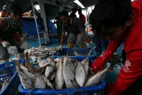 KKP Serahkan 2.950 Paket Ikan di Lima Wilayah
