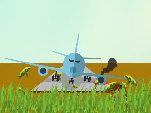MAF Aircraft Crashes into Papua's Lake Sentani