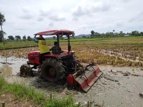 Petani dan Penyuluh di Kalsel Percepat Tanam Padi