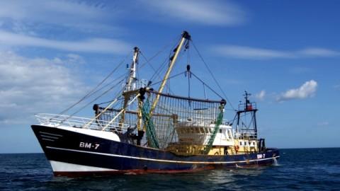 Dua ABK WNI di Kapal Long Xing 606 Dilaporkan Sehat
