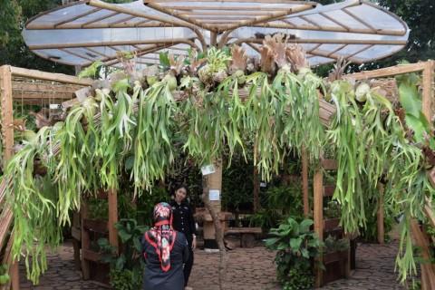 Indonesia Berbagi Pengalaman di Forum FAO