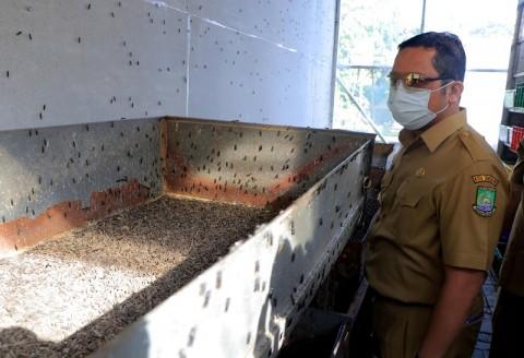 Pengelolaan Sampah di Kota Tangerang Dibantu Larva