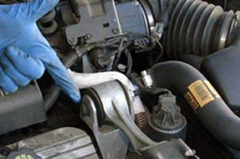 Begini Ciri <i>Engine Mounting</i> Mobil Rusak