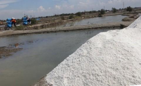 Industrialisasi Garam di NTT Butuh Dukungan Pemprov