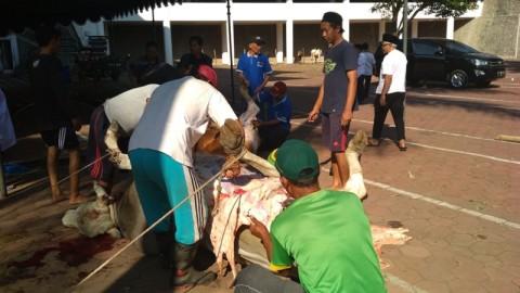 Aturan Rinci Pemotongan Hewan Kurban Saat Pandemi Covid-19