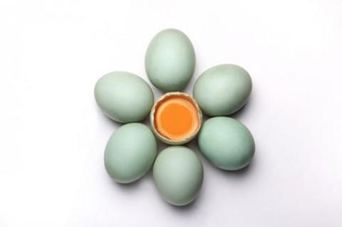 Manfaat Telur Bebek untuk Kesehatan