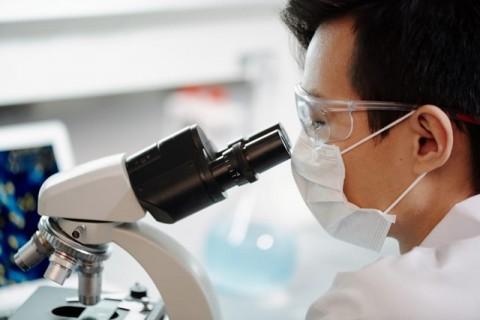 Flu Babi Jenis Baru di Tiongkok Bisa Menyebabkan Pandemi pada Manusia