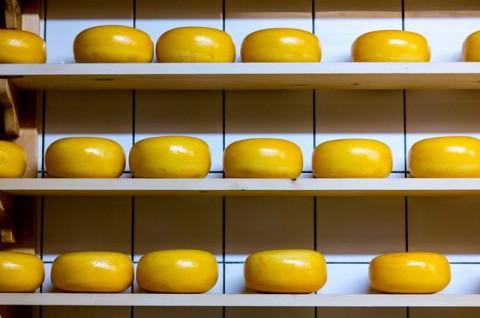 Keju Gouda, Keju Susu Kuning yang Hanya Dibuat di Musim Tertentu