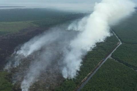 8 Hektare Lahan Gambut di Bengkalis Terbakar