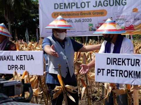 Petrokimia Tingkatkan Produktivitas Pertanian di Gorontalo