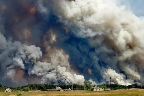 Lima Orang Tewas Dalam Kebakaran Hutan di Ukraina