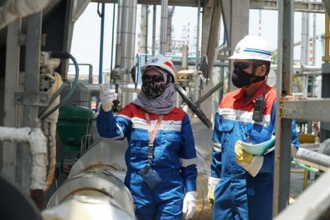 Pertamina Siap Produksi <i>Green</i> Diesel dari Kelapa Sawit
